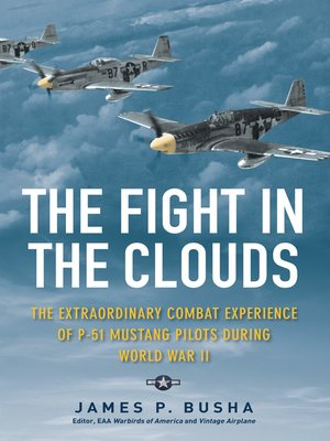 cover image of The Fight in the Clouds