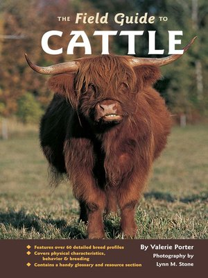 cover image of The Field Guide to Cattle