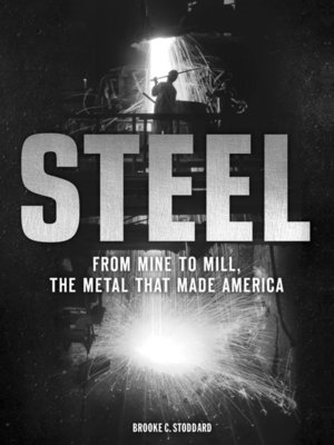 cover image of Steel