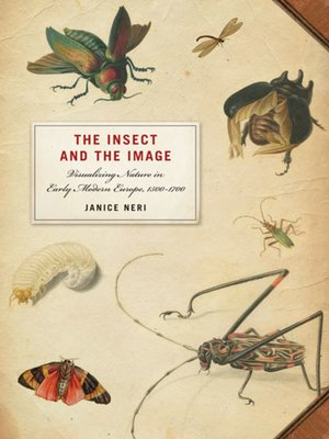 cover image of The Insect and the Image