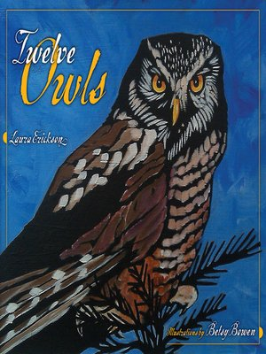 cover image of Twelve Owls