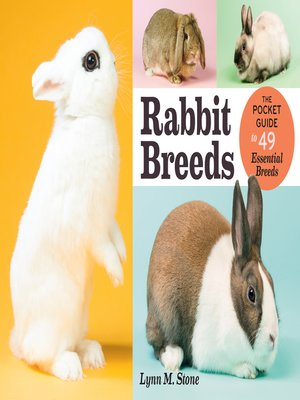 cover image of Rabbit Breeds