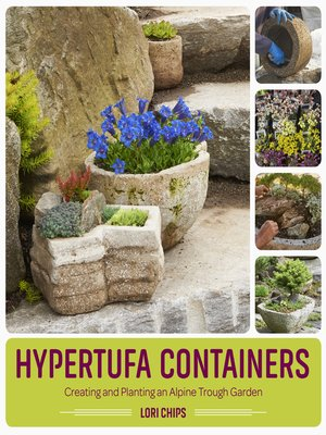cover image of Hypertufa Containers