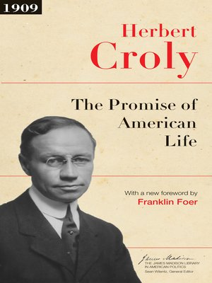 cover image of The Promise of American Life