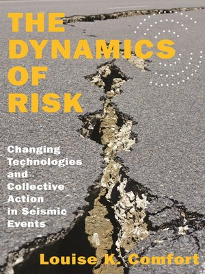 cover image of The Dynamics of Risk