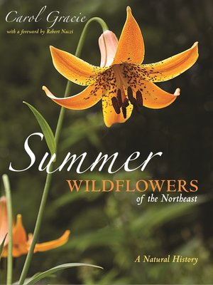 cover image of Summer Wildflowers of the Northeast