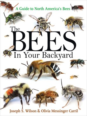 cover image of The Bees in Your Backyard