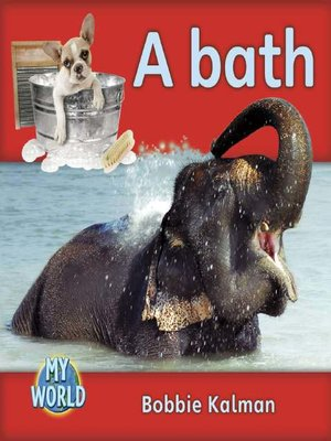 cover image of A Bath