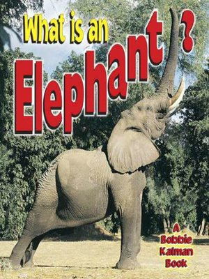 cover image of What is an Elephant?