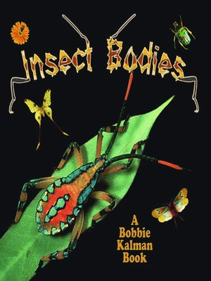 cover image of Insect Bodies