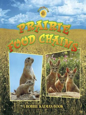 cover image of Prairie Food Chains