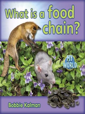 cover image of What Is a Food Chain?