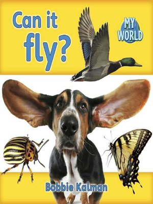 cover image of Can It Fly?