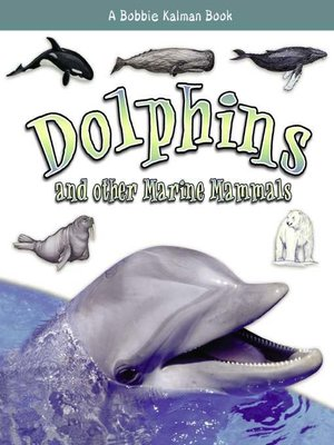 cover image of Dolphins and other Marine Mammals