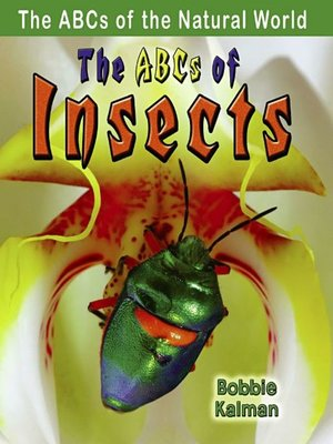 cover image of The ABCs of Insects