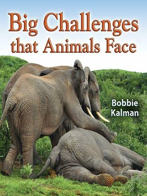 cover image of Big Challenges that Animals Face