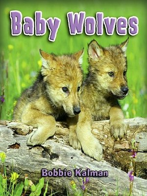 cover image of Baby Wolves