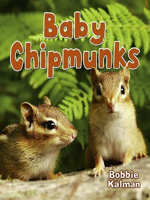 cover image of Baby Chipmunks