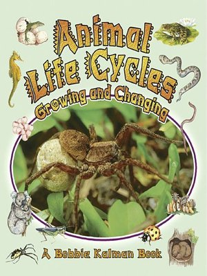 cover image of Animal Life Cycles