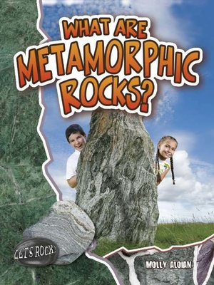 cover image of What Are Metamorphic Rocks?