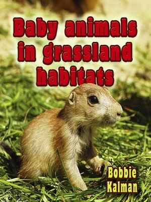 cover image of Baby Animals In Grassland Habitats