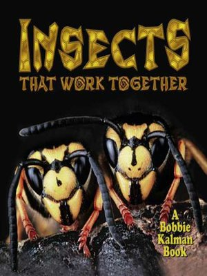 cover image of Insects that work together