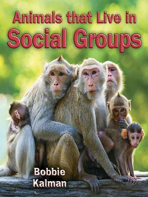 cover image of Animals that Live in Social Groups