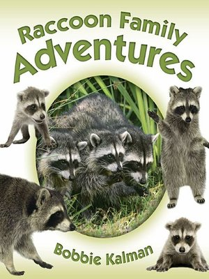 cover image of Raccoon Family Adventures
