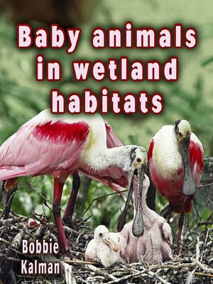 cover image of Baby Animals In Wetland Habitats