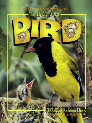 cover image of The Life Cycle of a Bird