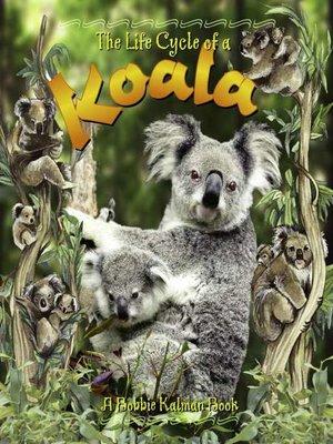 cover image of The Life Cycle of a Koala