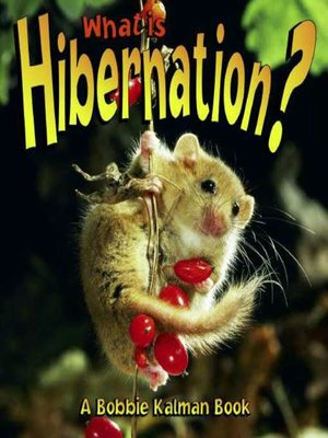 cover image of What is Hibernation?