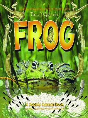 cover image of The Life Cycle of a Frog