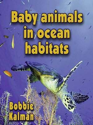 cover image of Baby Animals In Ocean Habitats