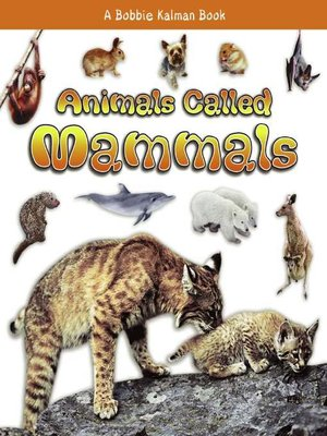 cover image of Animals Called Mammals