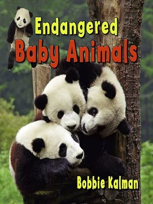 cover image of Endangered Baby Animals