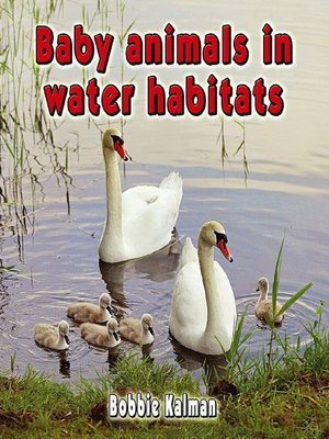 cover image of Baby Animals in Water Habitats