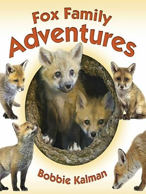cover image of Fox Family Adventures