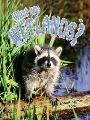 cover image of What are Wetlands?