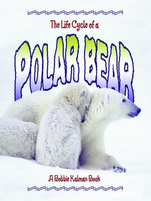 cover image of The Life Cycle of a Polar Bear