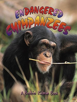 cover image of Endangered Chimpanzees
