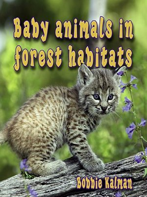 cover image of Baby Animals In Forest Habitats