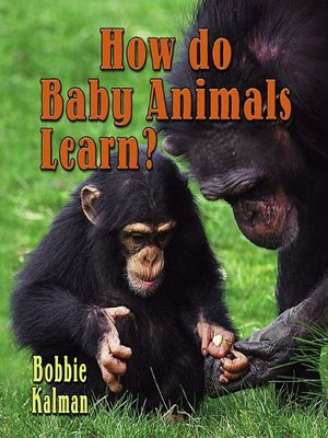 cover image of How Do Baby Animals Learn?