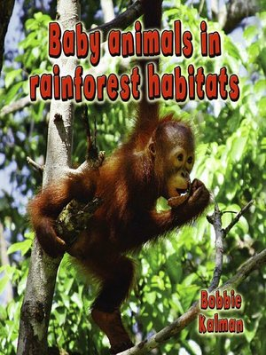 cover image of Baby Animals in Rainforest Habitats