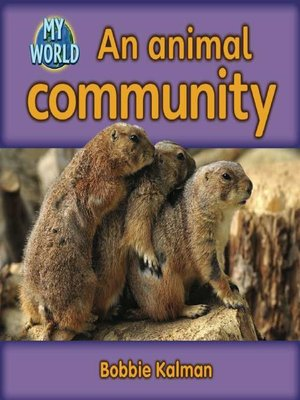 cover image of An Animal Community