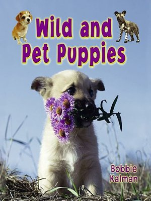 cover image of Wild and Pet Puppies