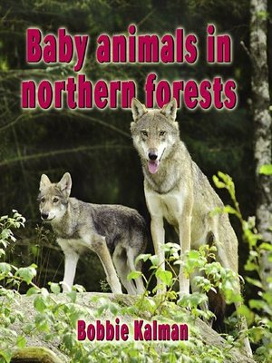 cover image of Baby animals in northern forests