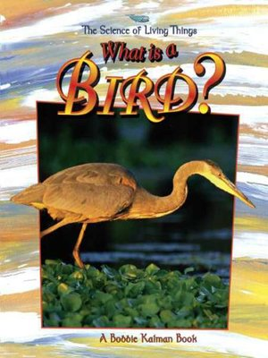 cover image of What is a Bird?