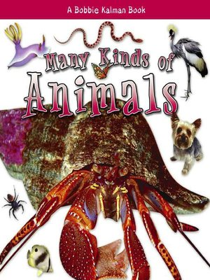 cover image of Many Kinds of Animals