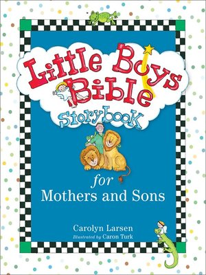 cover image of Little Boys Bible Storybook for Mothers and Sons